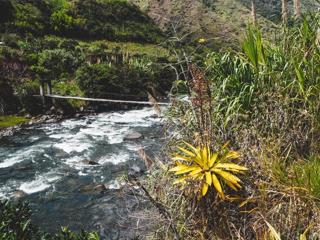 Intag Valley - Über Hunde, Ruhe und Langsamkeit 7