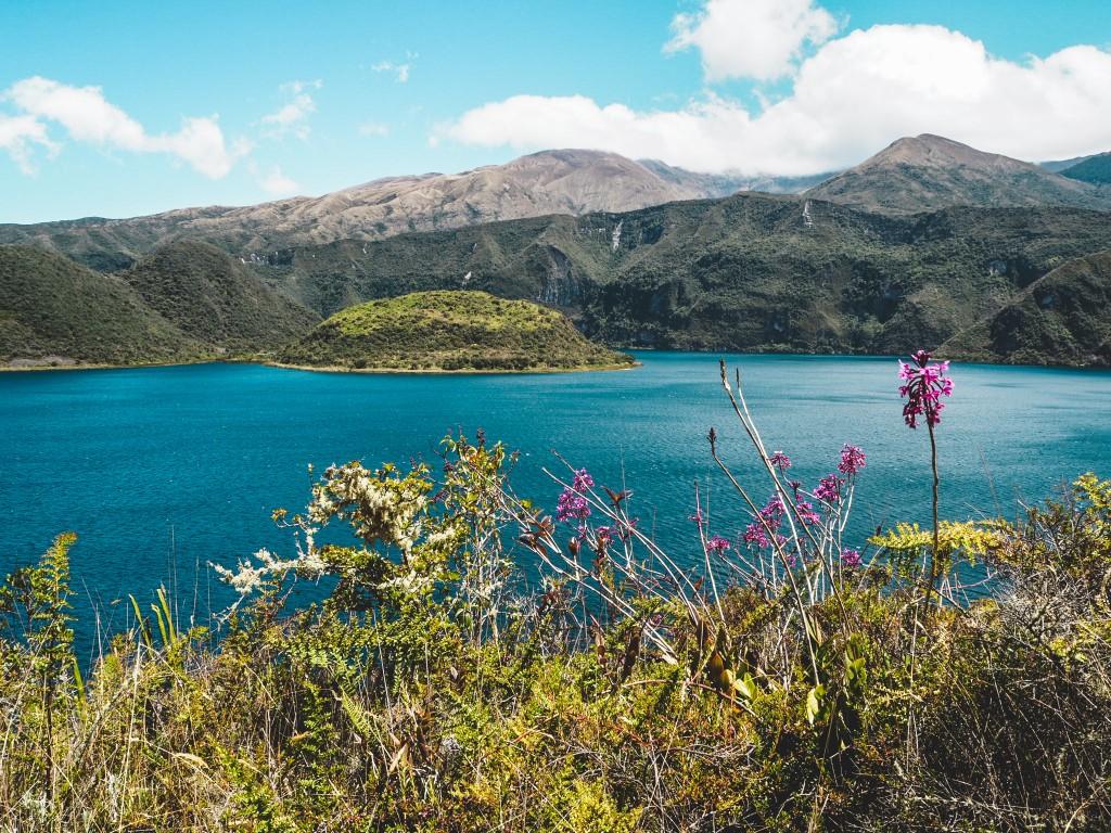 Intag Valley - Über Hunde, Ruhe und Langsamkeit 5