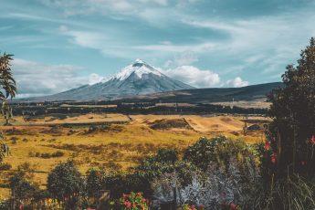 Arequipa - in der entspannten Stadt im Süden Perus 13