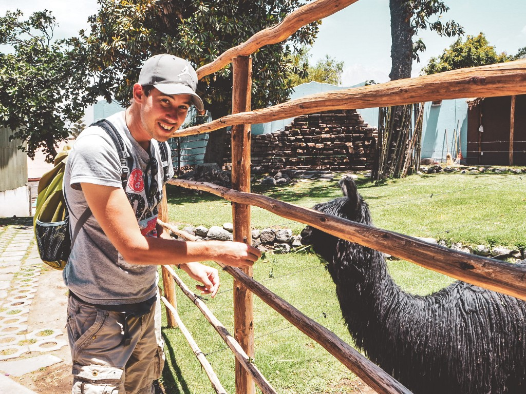 Arequipa - in der entspannten Stadt im Süden Perus 6