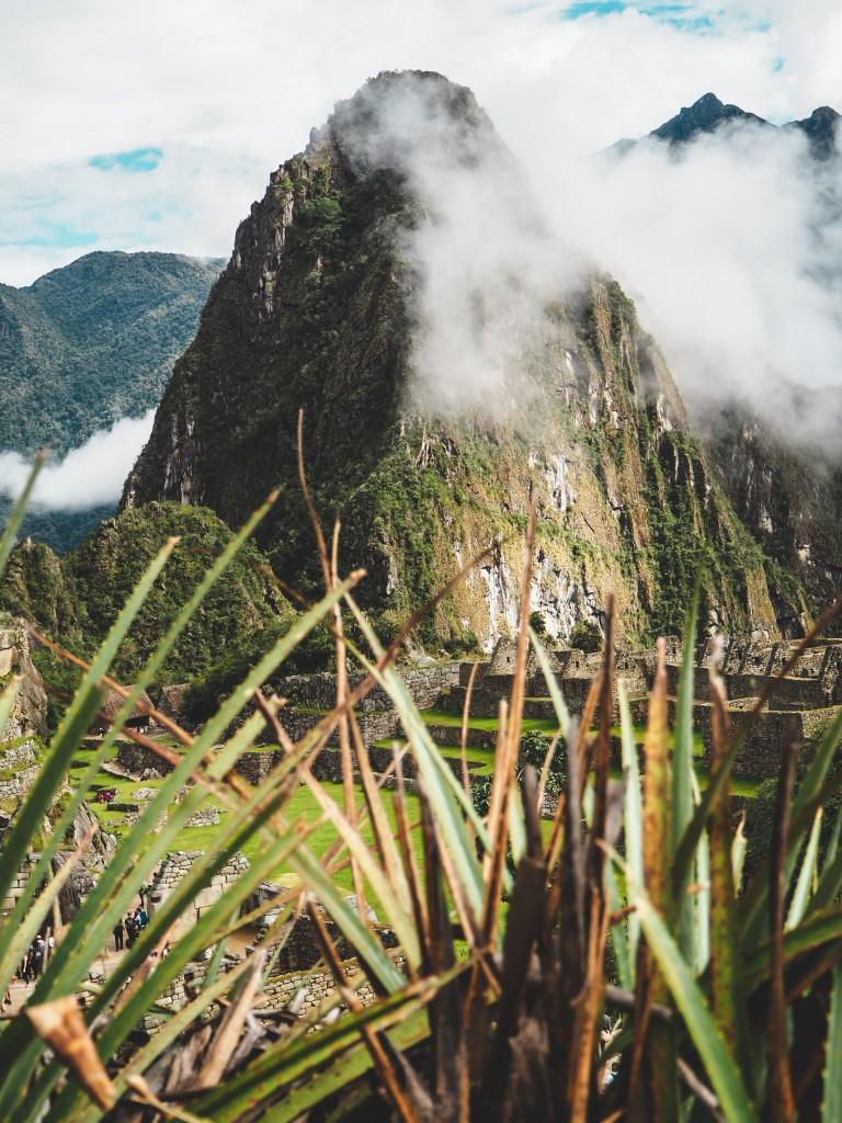Machu Pichu - Conquest of paradise 16